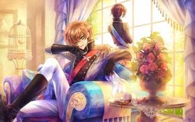 Обои цветы, комната, диван, птица, розы, букет, клетка