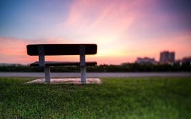 Обои трава, закат, скамейка, фокус, лавочка