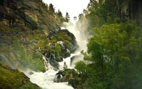 Картинка лес, природа, туман, водопад, пар, дымка