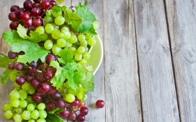 Обои виноград, green, листья, leaves, bowl, grapes, зеленый