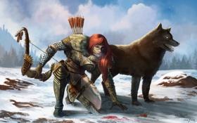 Обои девушка, снег, кровь, волк, лук, арт, Guild Wars 2