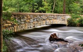 Обои зелень, лес, мост, течение, речка