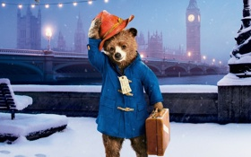 Картинка lights, cinema, bear, hat, bridge, bird, snow