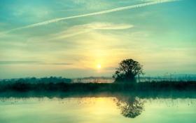 Обои солнце, природа, туман, гладь, отражение, река, дерево