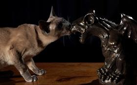 Картинка кот, кошак, статуэтка, котяра