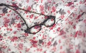 Картинка очки, кулон, ткань