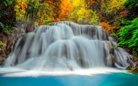 Картинка каскад, джунгли, осень, Thailand, река, поток, лес