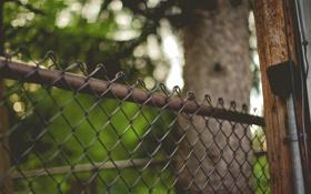 Обои сетка, забор, ограда