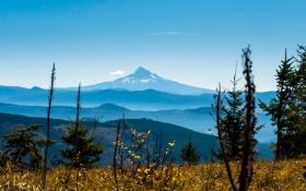 Обои небо, трава, горы, растение, вершина