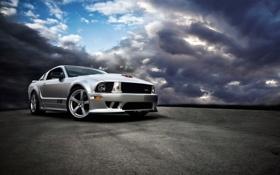 Картинка GT SHELBY 500, Ford Mustang, небо, асфальт