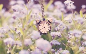 Обои стрелки, часы, будильник, цифры, цепочка