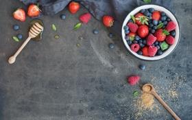 Картинка ягоды, малина, черника, клубника, fresh, ежевика, strawberry