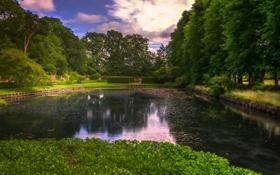 Картинка деревья, дизайн, пруд, парк, газон, Великобритания, кусты