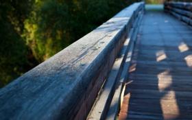 Картинка мост, природа, фокус