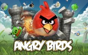 Обои игра, полёт, game, angry birds