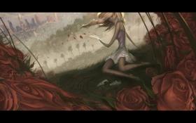 Обои розы, девушка, цветы