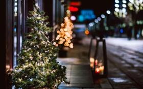 Обои Рождество, елка, улица, боке, ель, праздники, свет