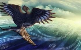 Картинка небо, облака, ветер, птица, крылья, перья, клюв
