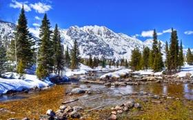 Картинка зима, небо, снег, деревья, горы, река, камни