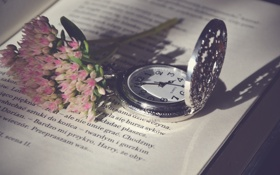 Обои цветы, текст, буквы, часы, книга, страницы