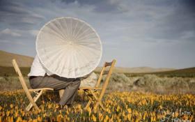Обои любовь, цветы, зонтик, стулья, долина, двое, лужайка