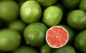 Обои красный, лимон, лайм, много, кисло
