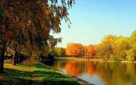 Картинка осень, небо, трава, листья, деревья, радость, озеро