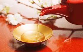 Обои цветы, красный, чай, разное