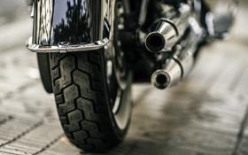 Обои колесо, мотоцикл, глушитель