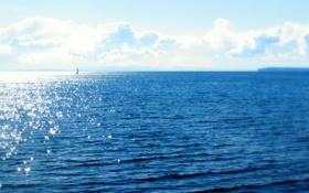 Обои парус, солнце, океан