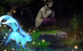 Картинка небо, звезды, ночь, животное, аниме, арт, хвост