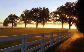 Обои Туман, Забор, Утро, Лучи, Парк, Кентуки, Morning Mist