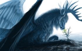 Обои существо, росток, рога, мех, листья, деревце, арт