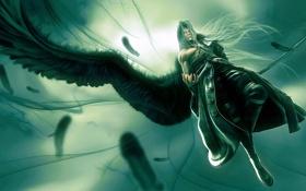 Обои полет, крылья, маг, Sephiroth tribute