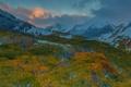 Картинка осень, снег, деревья, пейзаж, горы, природа, США