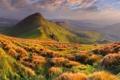 Картинка облака, трава, холмы