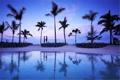 Картинка силуэты, двое, вечер, пальмы, океан