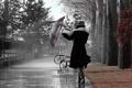 Картинка девушка, парк, зонтик, дождь