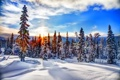 Картинка зима, лес, небо, облака, снег, закат, горы