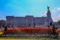 Картинка небо, цветы, Англия, Лондон, памятник, Букингемский дворец