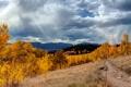 Картинка осень, лес, небо, трава, облака, свет, деревья