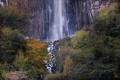 Картинка осень, лес, деревья, гора, водопад