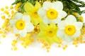 Картинка весна, желтый, daffodils, white, нарциссы, mimosa, мимоза
