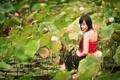 Картинка девушка, природа, лилии, азиатка