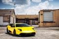 Картинка желтый, суперкар, Lamborghini Murcielago, ламборгини