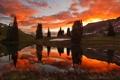 Картинка деревья, закат, горы, озеро, отражение