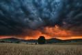 Картинка поле, закат, тучи