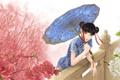 Картинка девушка, весна, зонт, аниме, сакура, арт, Wow