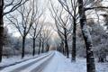 Картинка зима, пейзаж, дорога