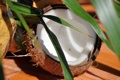 Картинка природа, еда, кокос, куба